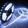 Светодиодные ленты одноцветные